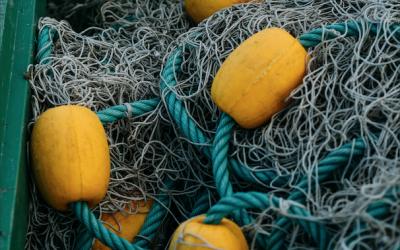 La Unión Europea aprueba la modificación del FEMP con nuevas medidas de apoyo al sector pesquero y acuícola