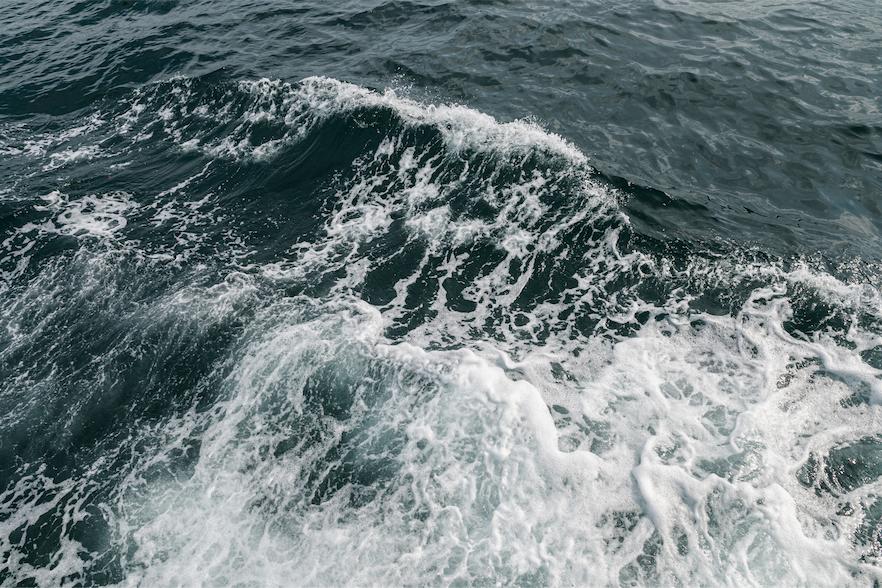 Exenciones a la Obligación de Desembarque, últimas modificaciones
